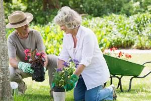 Zahrada-lidé