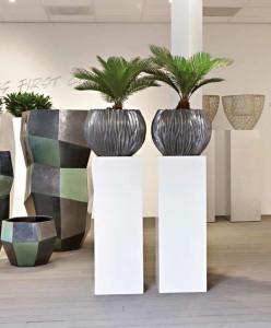 Moderní interiér se bez rostlin neobejde