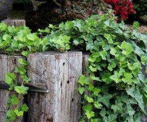 Jak využít pražce na zahradě