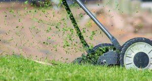 Víte, jak se starat o trávník?