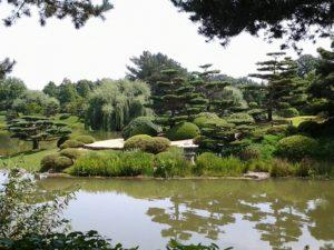 garden-543109_960_720